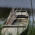 Photos: 舟