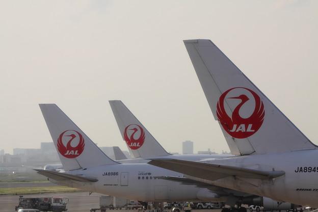 Photos: JALJALJAL