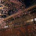 写真: 般若院と夜桜