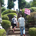 Photos: 高尾山にも登った
