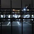 写真: night crawler