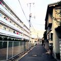 Photos: 風景素材266