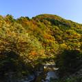 県道沿いの風景