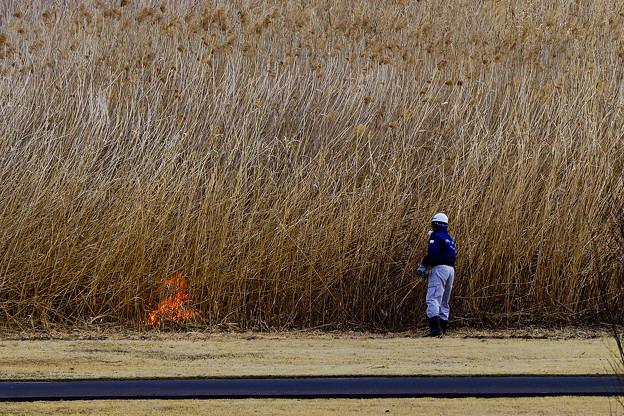 写真: 最初は小さな火種から。