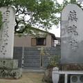 忠魂碑.白鳥神社
