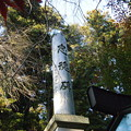 Photos: 忠魂碑、加茂神社
