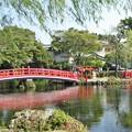湧玉池、水屋神社