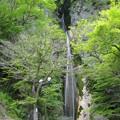 絹掛の滝.新見市