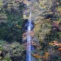 大山一の滝.琴浦町