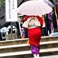 Photos: 雨の成人式