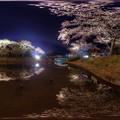 はままつフラワーパーク 夜桜 360度パノラマ写真(3) HDR