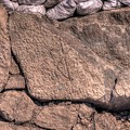 駿府城天守台発掘調査 石垣の刻印(8)
