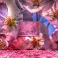 静岡県立美術館 「蜷川実花展」(6)