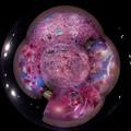 静岡県立美術館 「蜷川実花展」 Little Planet