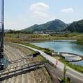 全長315m 水の郷大吊り橋