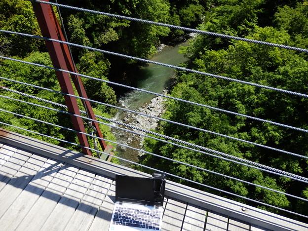 野原吊り橋は全長76m、高さ37mの木製の吊り橋