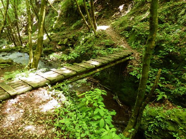 ちょっと怖い木橋