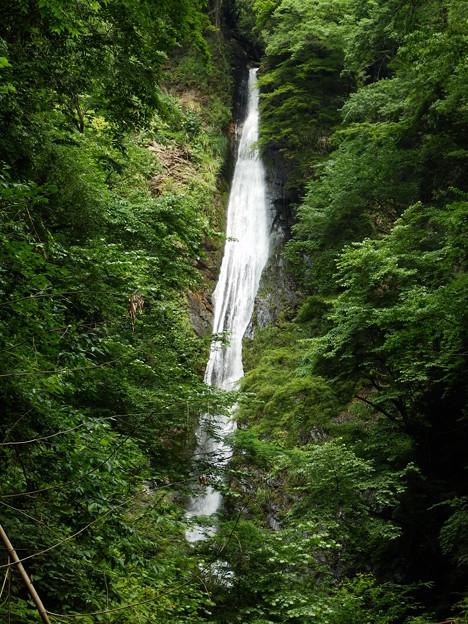 洒水の滝ズーム