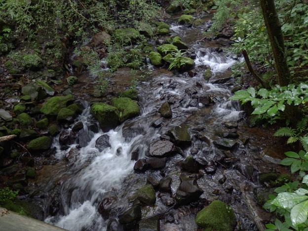 飛龍の滝近辺の沢