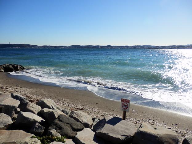 横須賀側の海岸