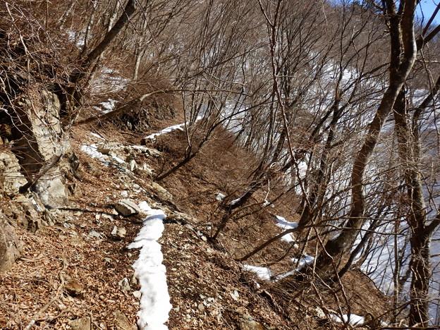 相変わらず南斜面は雪が融けていて