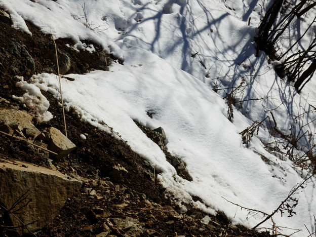 なんと崩落地点ロープが岩に引っ掛かっていて利用できない・・・