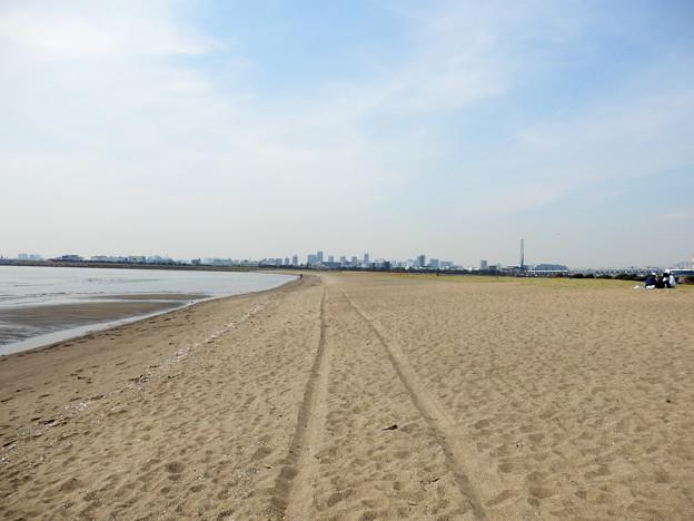 西なぎさの砂浜