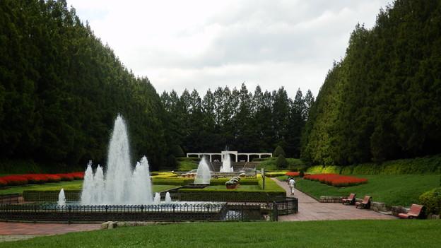 相模原公園のフランス式庭園