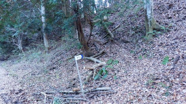 おや?菊花山への登り口が??