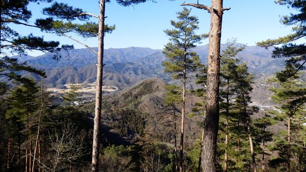 さぁ あの菊花山へ向かいます
