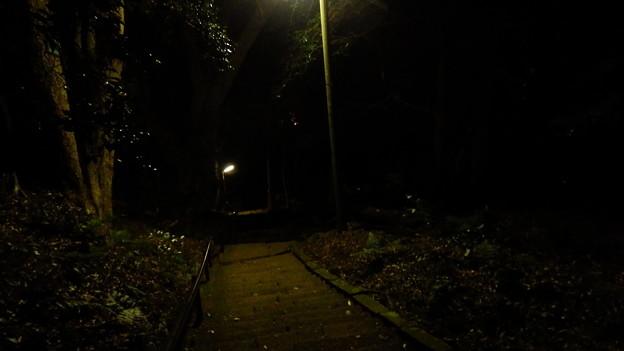 事前調査済みの急勾配階段は明かりが少しあった^^