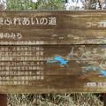 高尾山まで行けるんですよ^^