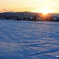 Photos: 雪の正月