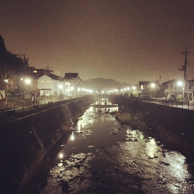 150319 鶴見川