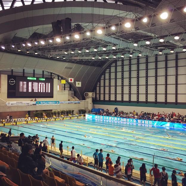 150407 東京辰巳国際水泳場