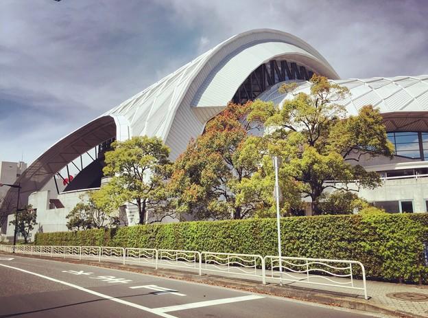 140415 東京辰巳国際水泳場