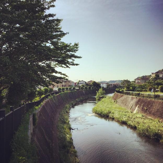 150514 鶴見川