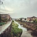 写真: 150528 鶴見川