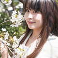Photos: 桜詩