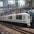 Photos: E259系 マリンエクスプレス踊り子号