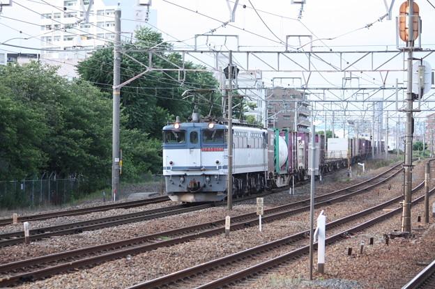 75レ EF65 2081牽引 (1)