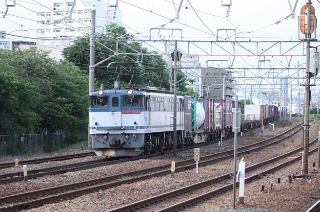 75レ EF65 2081牽引 (3)