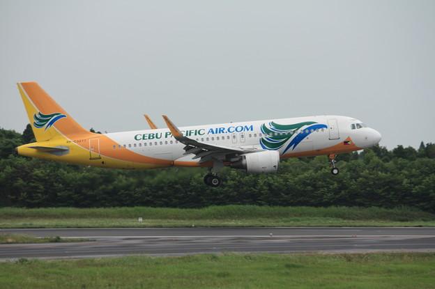 セブパシフィック航空 エアバスA320-200 RP-C3277 (1)