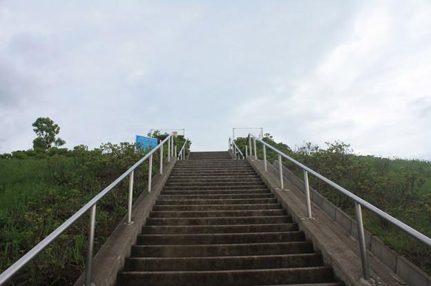 東雲の丘 IMG_116551