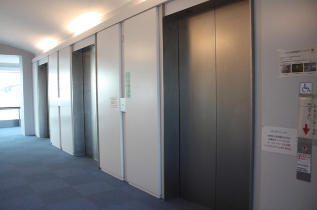 茨城県庁のエレベーターホール IMG_122124