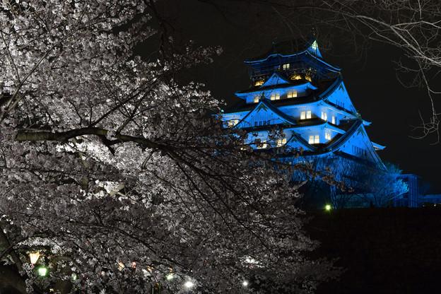 大阪城ブルーライトアップと夜桜