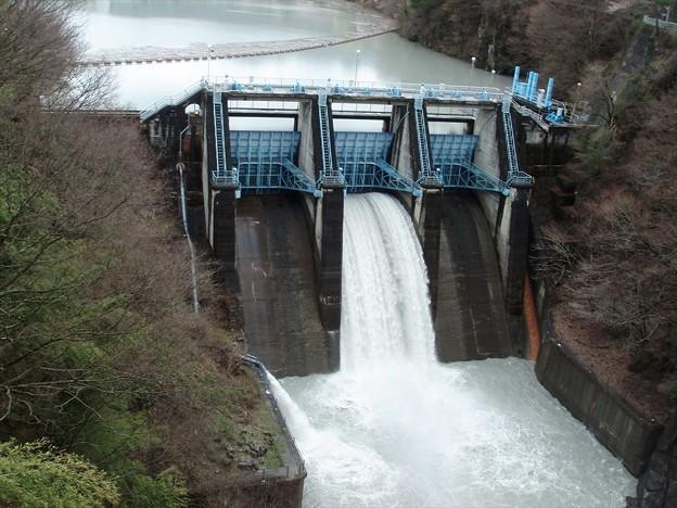 桜公園の手前でダムの放流に遭遇~