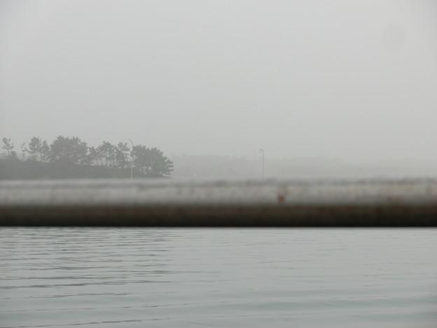 7時40分、濃霧がすごい。