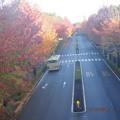 写真: 土曜日の朝のバス通り