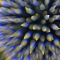 夜空に舞い散るスギ火粉